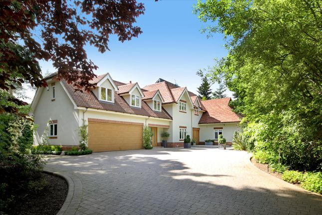 Thumbnail Detached house for sale in Spring Woods, Wentworth, Surrey