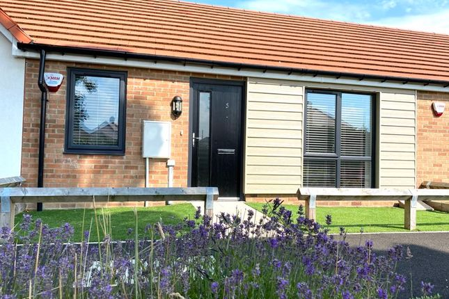 Thumbnail Bungalow for sale in Birchberry Close, Nookside, Sunderland