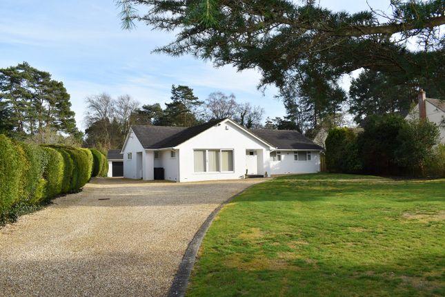 Thumbnail Bungalow for sale in Avon Avenue, Avon Castle, Ringwood