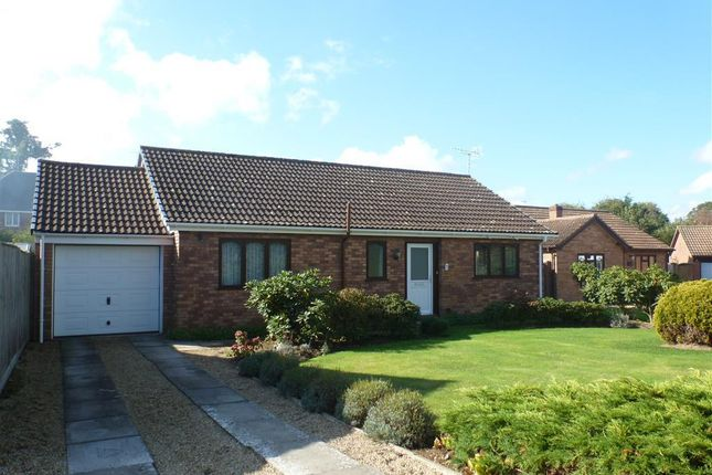 Thumbnail Bungalow to rent in Oakapple Drive, Dereham