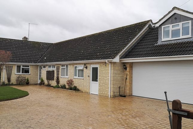 Thumbnail Detached bungalow to rent in Burton Street, Marnhull, Dorset