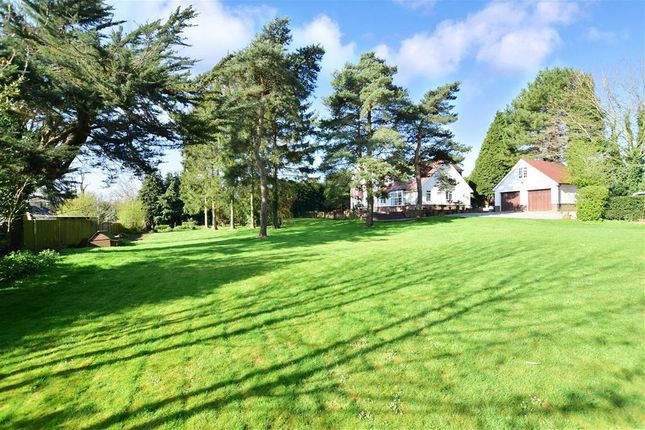 Thumbnail Detached house for sale in Spring Gardens, Washington, West Sussex