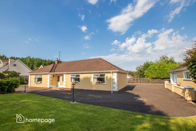 Thumbnail Detached house for sale in 5 Dernaflaw Road, Dungiven