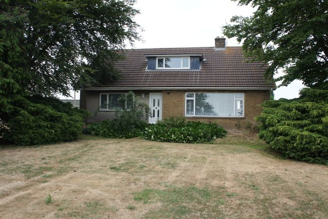 Thumbnail Detached bungalow to rent in Thorney Toll, Wisbech
