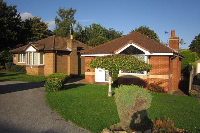 Thumbnail 2 bed detached bungalow to rent in Mayfields, Scawthorpe, Doncaster
