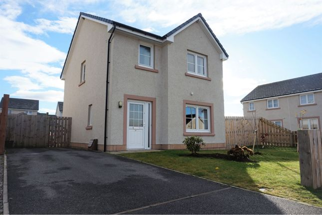 Thumbnail Detached house for sale in Willow Court, Dingwall