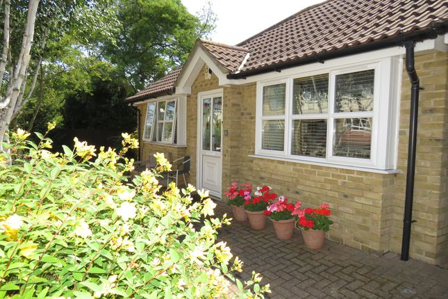 Thumbnail Detached bungalow for sale in Rayleigh Road, Eastwood, Leigh-On-Sea