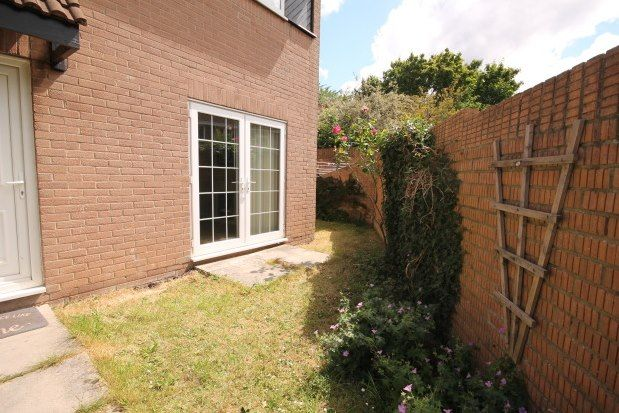 Thumbnail Property to rent in Speedwell, Bristol