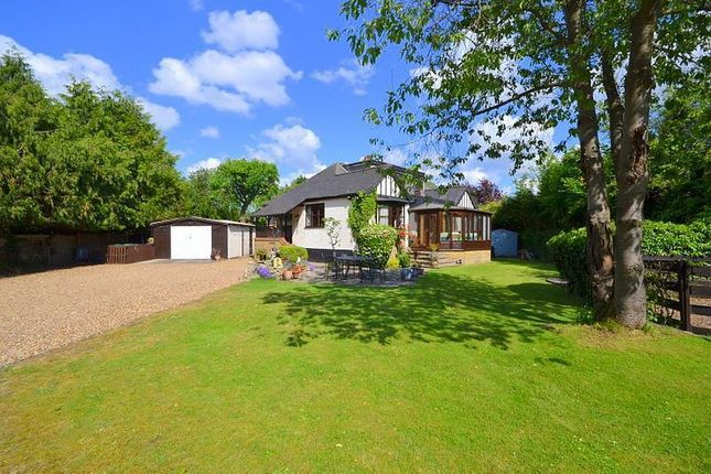 Thumbnail Detached bungalow for sale in Towpath, Off Reed Place, Shepperton
