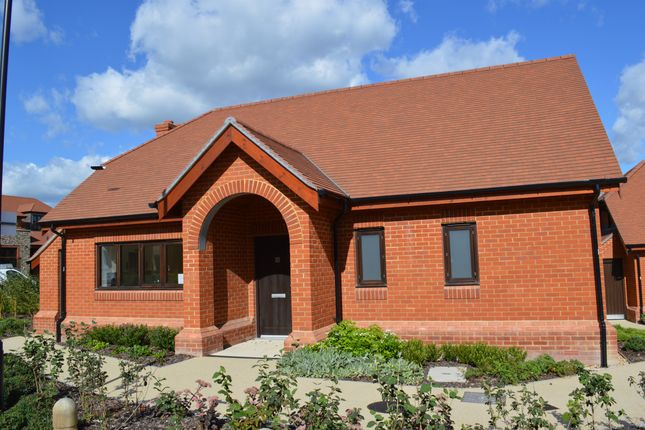 Thumbnail Detached bungalow for sale in Friary Meadow, Titchfield, Fareham