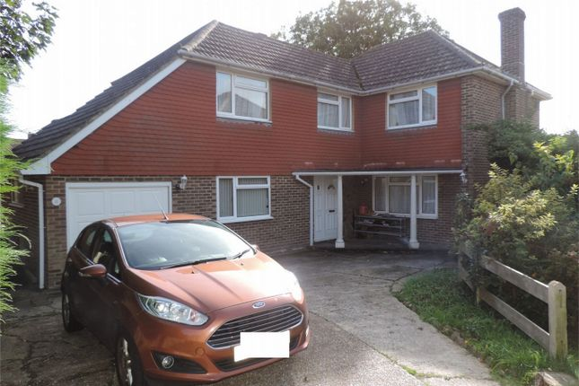 Thumbnail Detached house for sale in Camber Close, Bexhill On Sea, East Sussex