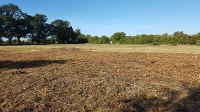 Thumbnail Land for sale in Melford Road, Lavenham, Sudbury, Suffolk