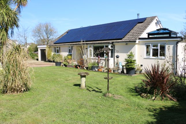 Thumbnail Detached bungalow for sale in Rosa Dene, Talskiddy