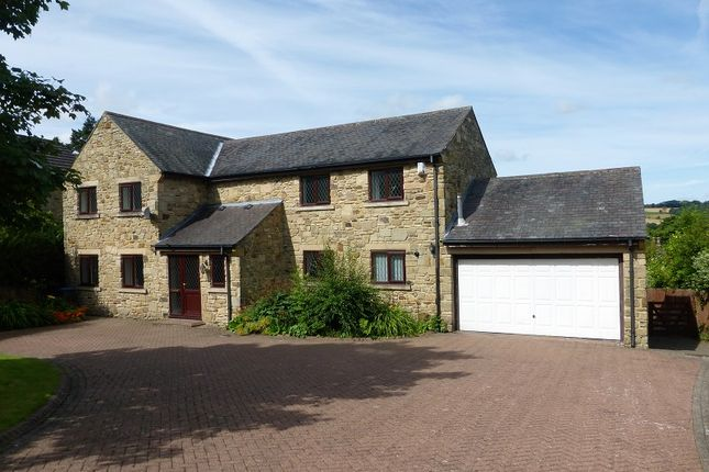 Thumbnail Detached house for sale in Peile Park, Shotley Bridge