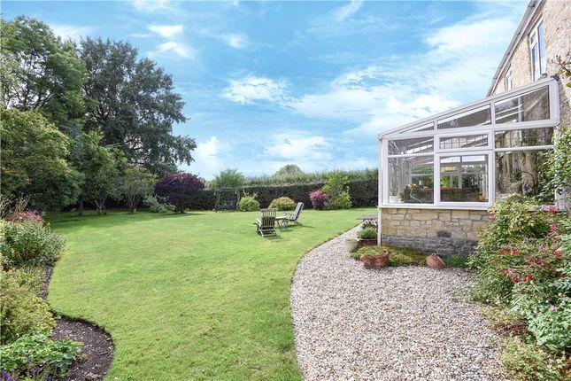 Garden of Bowridge Hill, Gillingham, Dorset SP8