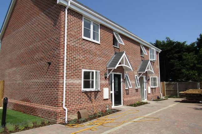 Thumbnail Semi-detached house to rent in Orchard Crescent, Kirby Cross, Frinton-On-Sea