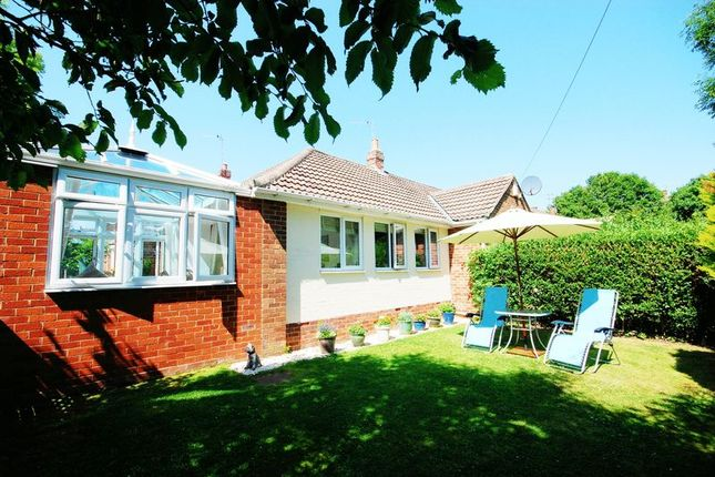 Thumbnail Semi-detached bungalow for sale in Ash Grove, Morpeth