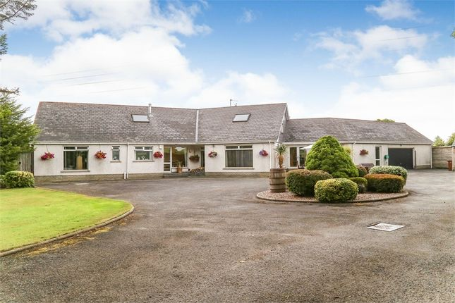 Thumbnail Detached house for sale in 7 Ravarnet Road, Lisburn, County Antrim