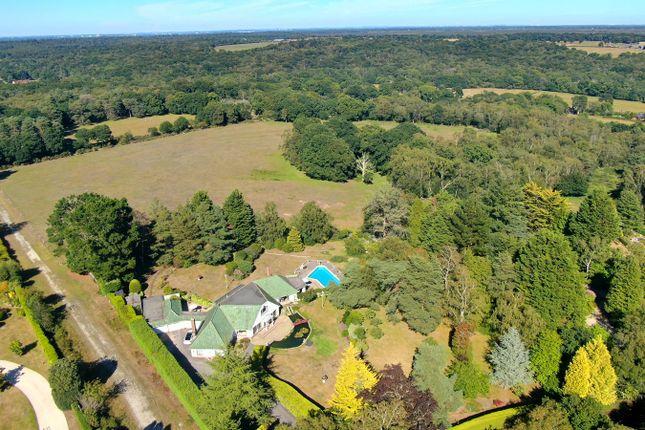 Thumbnail Detached house for sale in Sandy Down, Boldre, Lymington