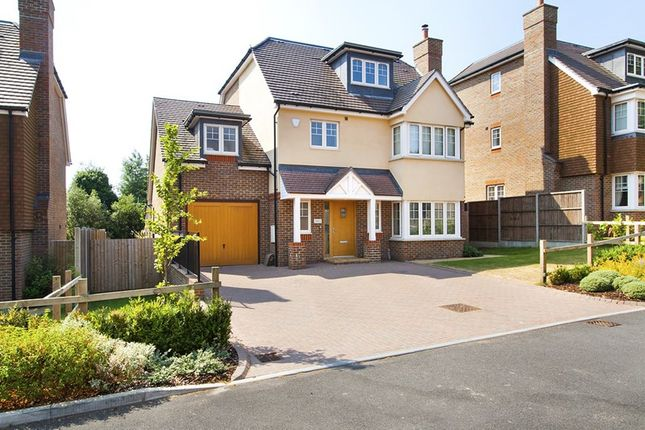 Thumbnail Detached house for sale in West Hill, Oxted