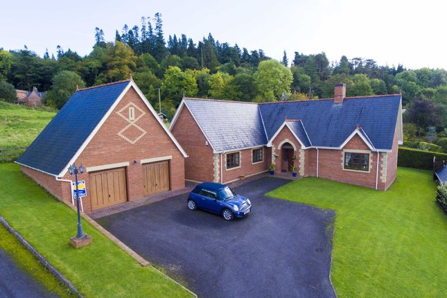 Thumbnail Detached bungalow for sale in Poplar Drive, Leighton, Welshpool