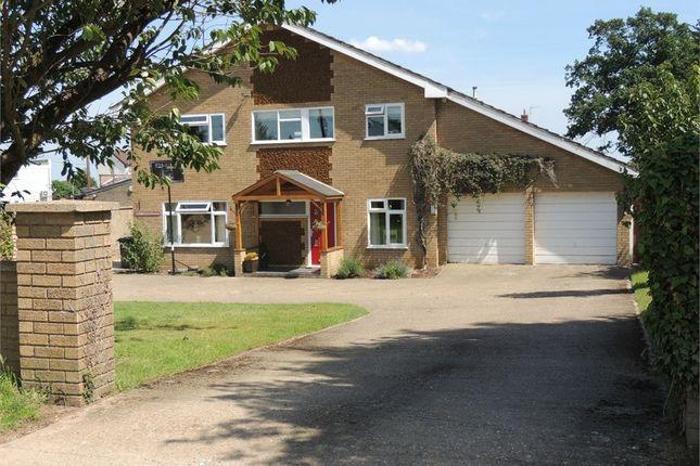 Thumbnail Detached house for sale in Bridle Lane, Downham Market