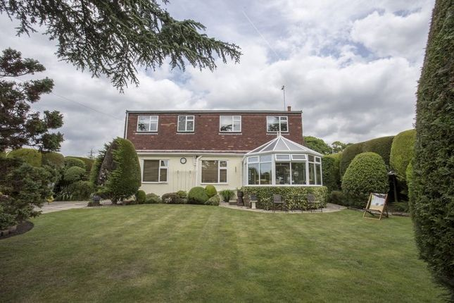 Thumbnail Detached house for sale in The Crescent, Liverpool Road South, Maghull