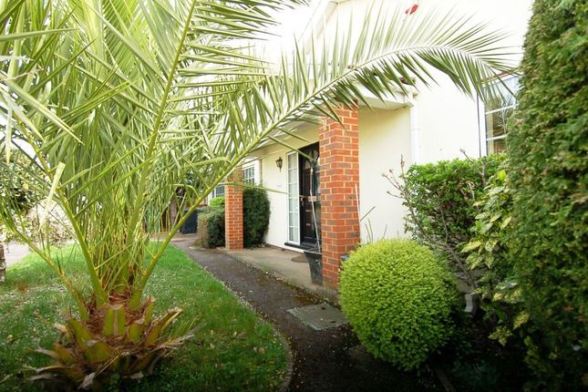 Thumbnail Detached bungalow for sale in Molember Road, East Molesey