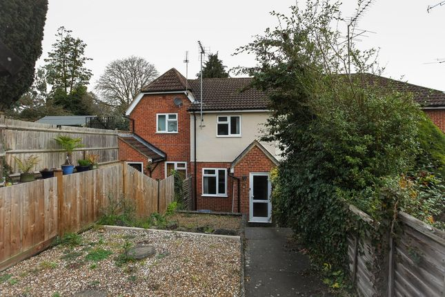 Thumbnail Terraced house to rent in Hadham Road, Bishop's Stortford