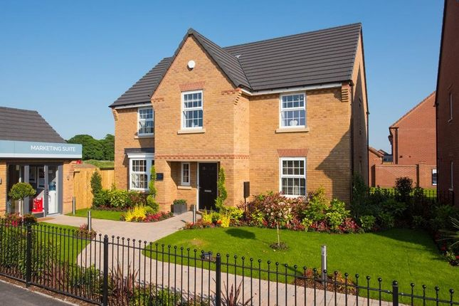 "Thumbnail Detached house for sale in ""Winstone"" at Harland Way, Cottingham"