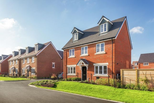 Thumbnail Detached house for sale in Sheerwater Way, Chichester