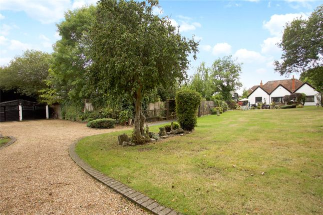 Thumbnail Detached bungalow for sale in Church Road, Winkfield, Windsor, Berkshire