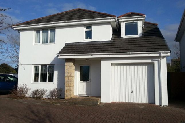 Thumbnail Detached house for sale in Bosmeor Court, Bosmeor Park, Redruth, Cornwall