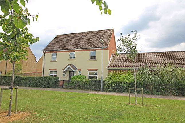 Thumbnail Detached house for sale in The Glades, Hinchingbrooke Park, Huntingdon