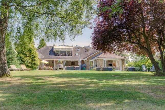 Thumbnail Detached bungalow for sale in Church Road, Little Berkhamsted, Hertford