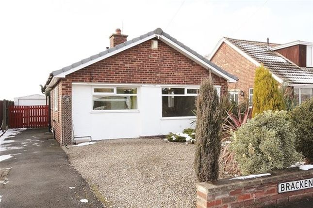 Thumbnail Bungalow to rent in Brackenhill Avenue, Selby