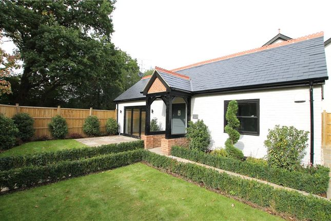Thumbnail Detached house for sale in Scotts Grove Road, Chobham, Woking, Surrey