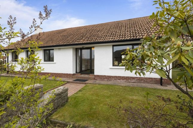Thumbnail Bungalow for sale in Norwood Crescent, Belmont, Belfast