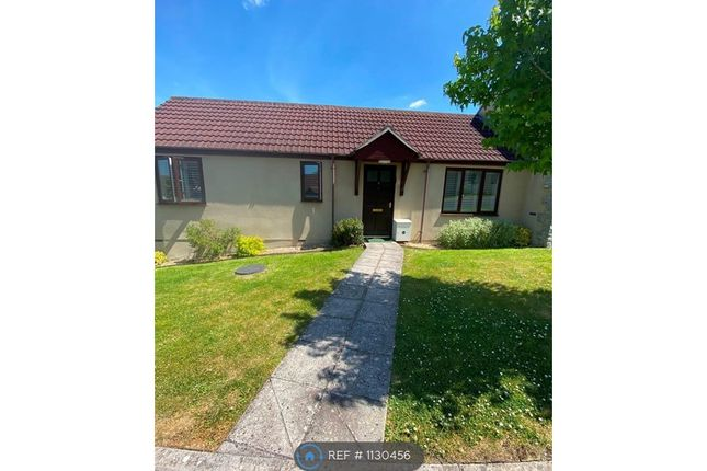 1 bed bungalow to rent in Parkfields Orchard, Butleigh, Glastonbury BA6