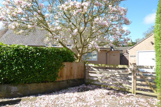 Thumbnail Detached bungalow for sale in Gun Street, Rossett, Wrexham