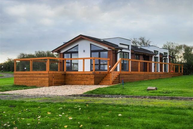 Thumbnail Property for sale in Parc Morlais, Llanon, Ceredigion
