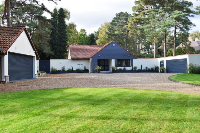 Thumbnail Detached house for sale in Avon Castle Drive, Ringwood