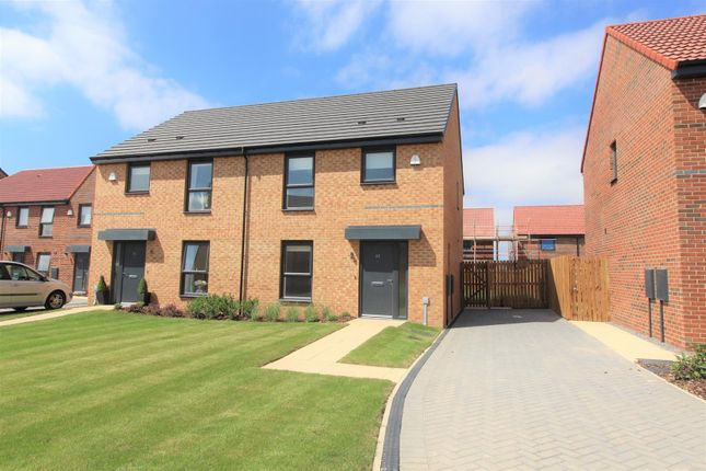 Thumbnail Property to rent in Cowslip Drive, Redcar