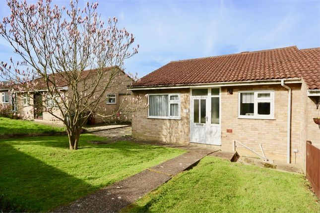 Thumbnail Semi-detached bungalow to rent in Farmland Way, Hailsham, East Sussex