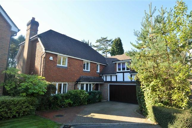 Thumbnail Detached house for sale in Langridge Close, Crowborough
