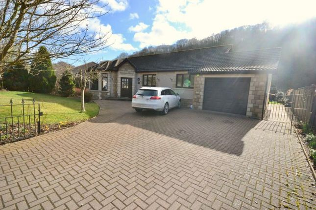 Thumbnail Bungalow for sale in Slitrig Edge, 27 Liddesdale Crescent Hawick