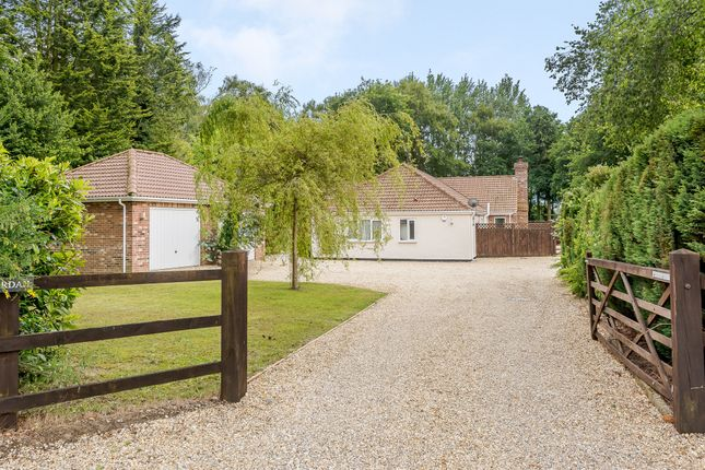 Thumbnail Detached bungalow for sale in Lady Lane, Hainford, Norwich
