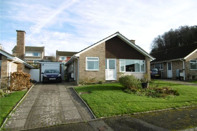 Thumbnail Detached bungalow to rent in Coneygar Close, Bridport