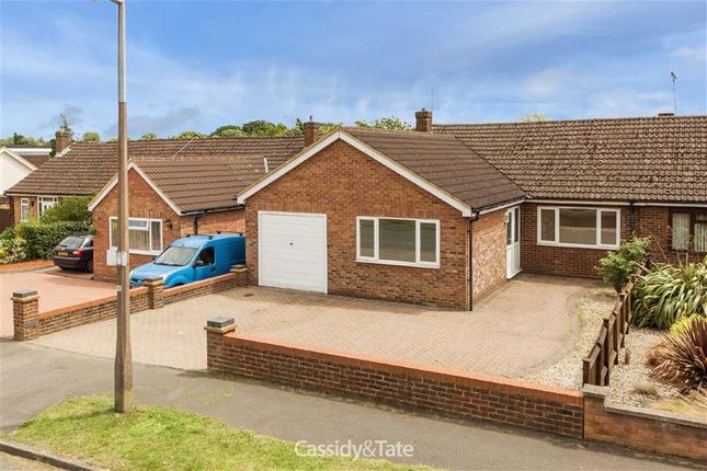Thumbnail Bungalow to rent in Jenkins Avenue, St Albans, Hertfordshire