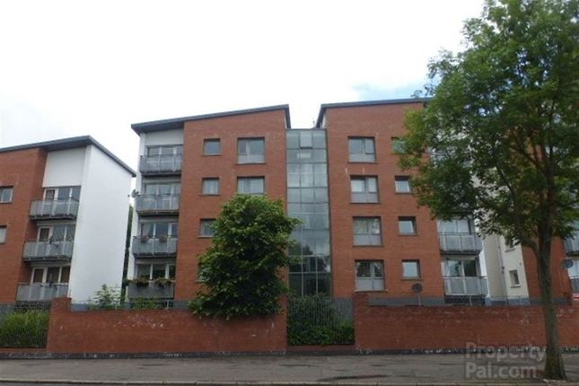 Thumbnail Flat to rent in Shore Road, Belfast